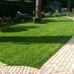 Ландшафтный дизайн: Устройство газонов