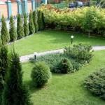 Хвойная композиция - Озеленение участка