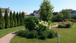 Посадка сада - студия ландшафтного дизайна Алисы Самойловой