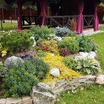 Альпийские горки - Студия ландшафтного дизайна Строй-Газон