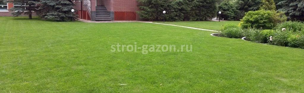 Укладка рулонного газона - Студия ландшафтного дизайна Алисы Самойловой