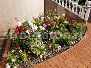 Розарий - Ландшафтный дизайн загородного дома
