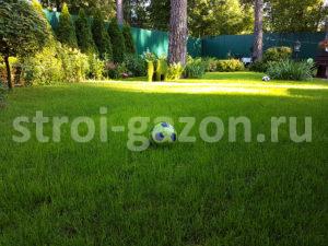 Рулонный газон - Ландшафтный дизайн загородного дома